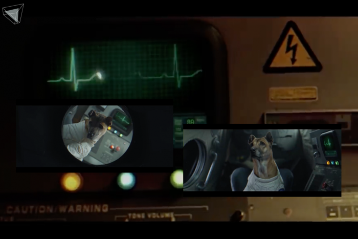 Ten To Twelve – ไม่มีที่มา (Untitled) Music Video ที่มีสัตว์เป็นตัวดำเนินเรื่อง