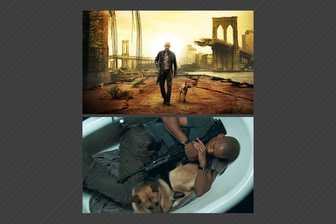 I am legend หนัง Action ที่พระเอกมีสุนัขเป็นเพื่อน