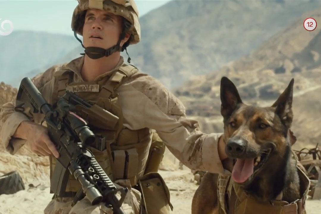 ไคล์ วินค็อตต์ หนัง Action ที่พระเอกมีสุนัขเป็นเพื่อน