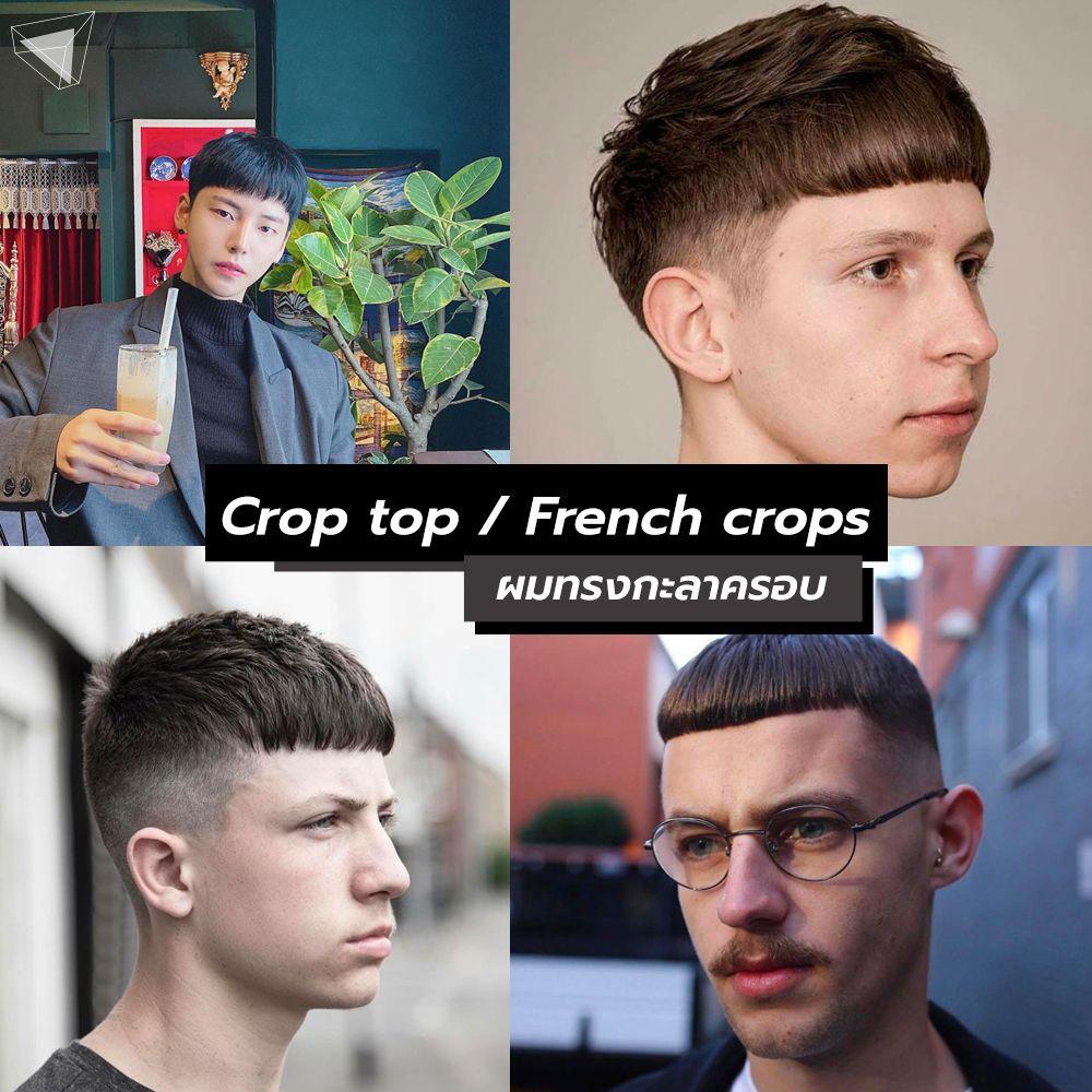 ทรงผมผู้ชายคลาสสิก Crop top / French crops