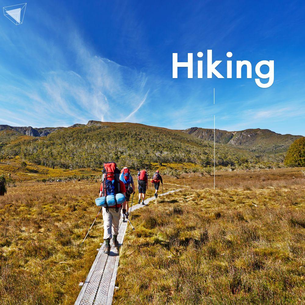 เดินป่า Hiking