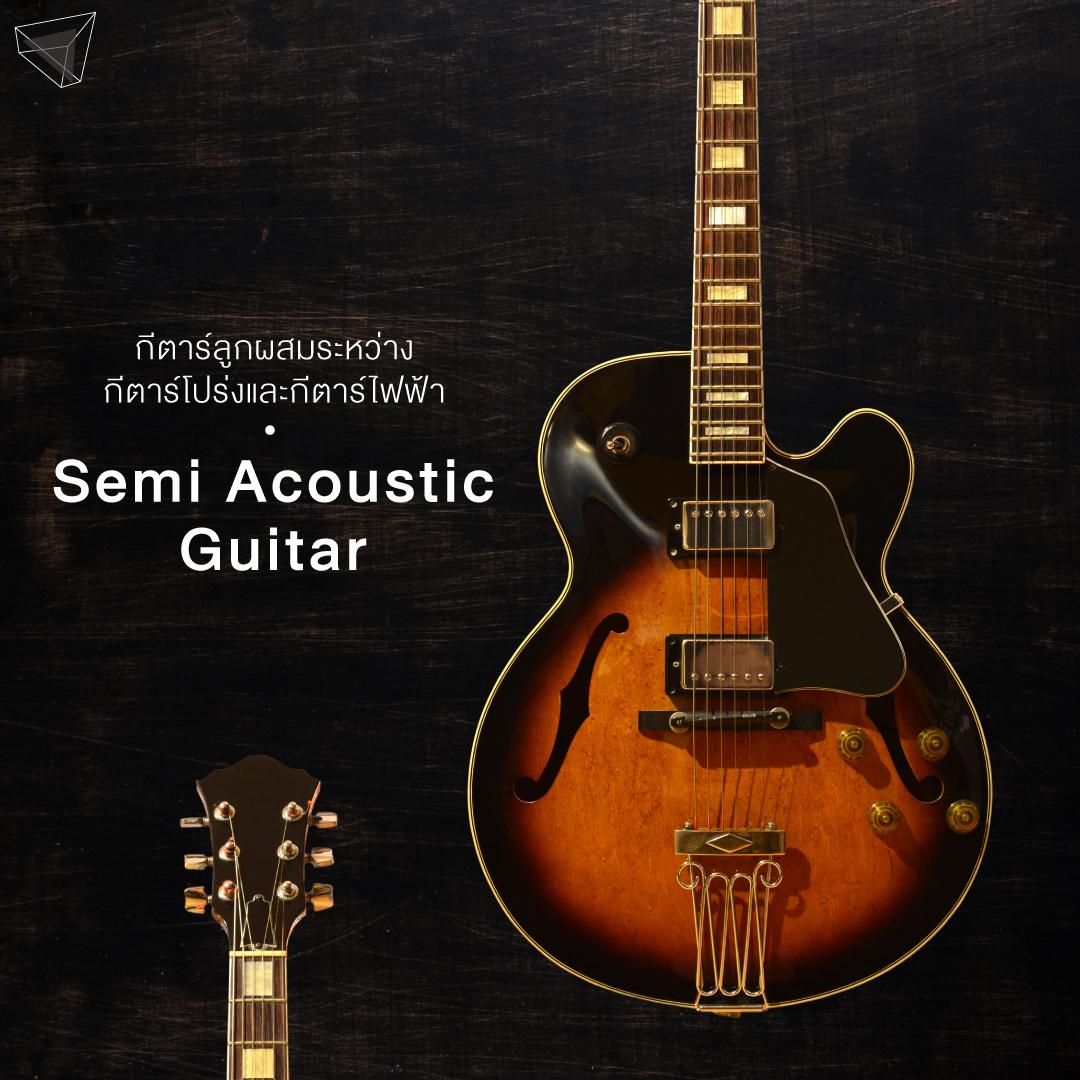กีตาร์ลูกผสมระหว่างกีตาร์โปร่งกับกีตาร์ไฟฟ้า (Semi Acoustic Guitar)