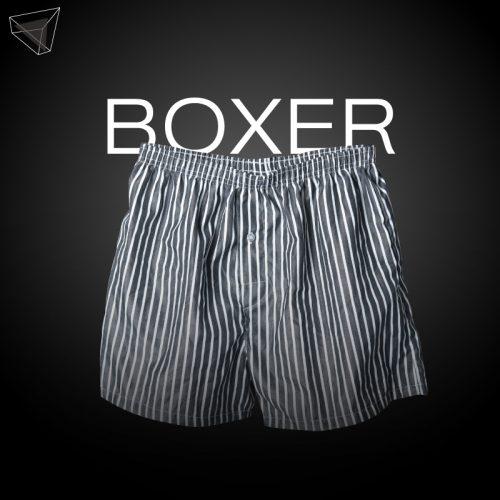 กางเกงในชาย ทรง Boxer